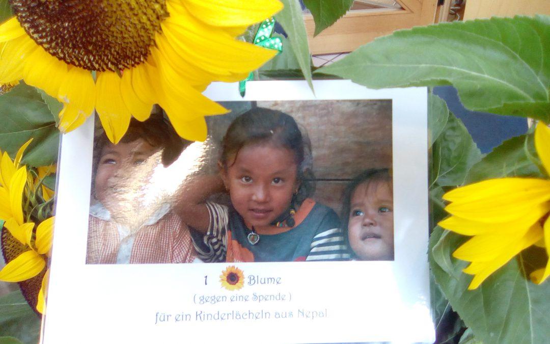 """""""Eine Blume gegen eine Spende – Für ein Kinderlächeln in Nepal"""""""